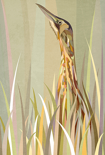 Inspired by birds
