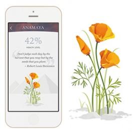Anamaya plants