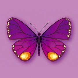 Natwest Butterflies