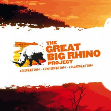 The Great Big Rhino Project